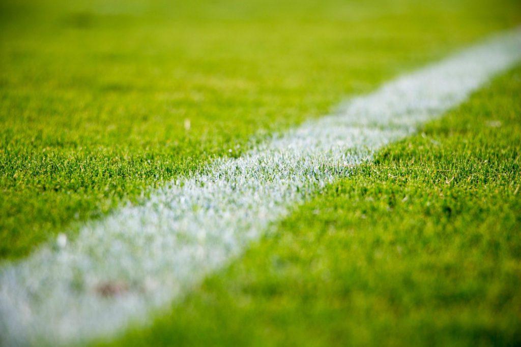 Football pitch - euro 2016 social media
