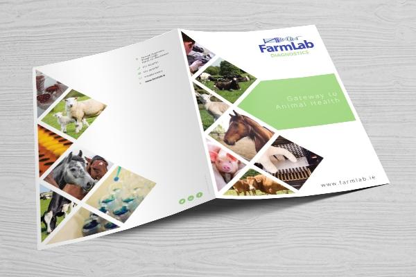 Farmlab Diagnostics | Emarkable Case Study - Emarkable.ie